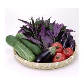[送料込]久米農園の夏野菜【ご当地地域名産ギフト】【ご贈答に】