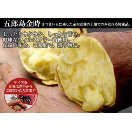 【送料込】金沢発・コボコボのサツマイモ「五郎島金時(3kg)」【地域名産ギフト】【ご当地グルメ】【お中元・ご贈答に】