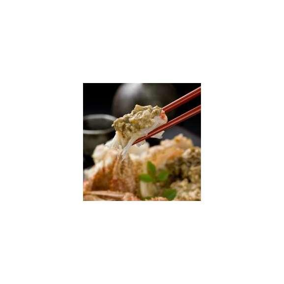 【送料無料】 毛ガニ ボイル済み 500g×1尾 職人が茹で上げ後、急速冷凍!カニ/かに/蟹/毛がに02