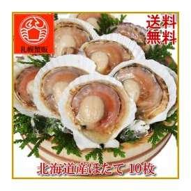 【送料無料】 北海道産 ほたて 10枚 北海道/ホタテ/ほたて/帆立/貝 殻を片側だけ外してあるのでお手軽!