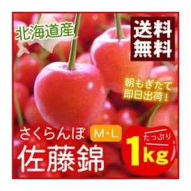 北海道仁木町産 さくらんぼ・佐藤錦(バラ詰め)M・L混合1kg入 【送料無料】(サクランボ)