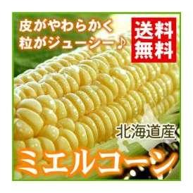 ミエルコーンL〜2L(10本入り)【送料無料】
