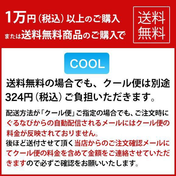 オーガニック微炭酸レモネード【ELIXIA】02