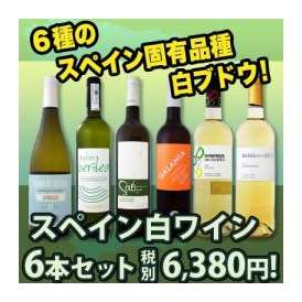 【送料無料】スペインおうちバル白ワイン6本セット!!