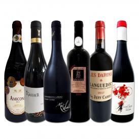 濃厚赤ワイン好き必見フランス・イタリア・スペインから飲み応え