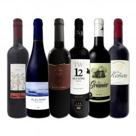 スペイン Spain 全土の地ワイン wine 満喫 スペイン Spain おうちバル赤ワイン wine 6本セット set