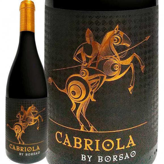 カブリオラ・バイ・ボルサオ 2016 スペイン Spain 赤ワイン wine 750ml フルボディ パーカー parker 91点 ガルナッチャ カンポ・デ・ボルハ アラゴン Alc15.5% 01