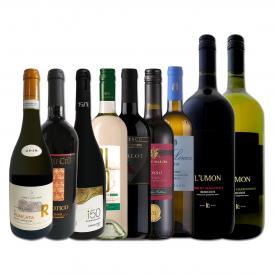 マグナムボトル2本入り 端数在庫一掃 イタリア Italy ワイン wine 9本セット set