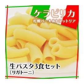 生パスタ(リガトーニ)3食セット