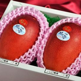 きむら農園「時の雫《極み》」マンゴー 2玉化粧箱入り 3L