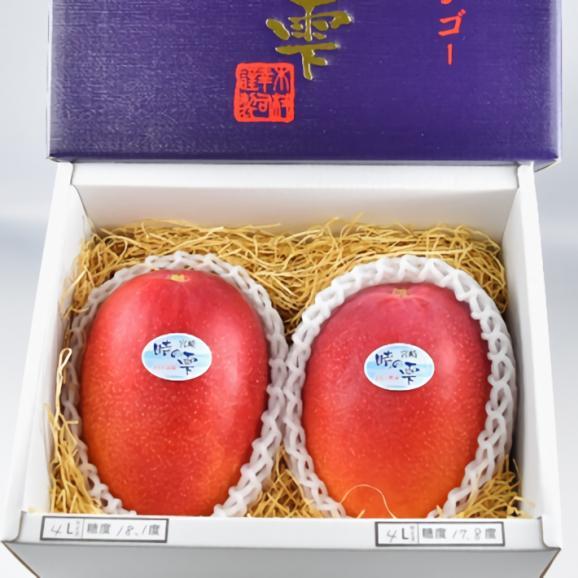 きむら農園「時の雫《極み》」マンゴー 2玉化粧箱入り 4L01