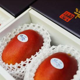 きむら農園「時の雫」マンゴー 2玉化粧箱入り 2L
