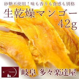 岐阜 多々楽達屋 生乾燥マンゴー42g ドライフルーツ 砂糖不使用 たたらちや 生乾燥南アフリカ産マンゴー クール冷蔵便 #8