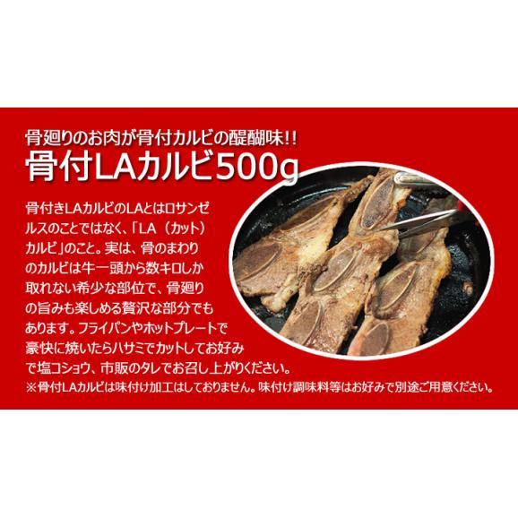 手軽に焼肉パーティーセット(骨付きLAカルビ500g、タレ漬けテッチャン200g、白菜キムチ250g、韓国冷麺4食、チャンジャ200g)冷凍限定 #802