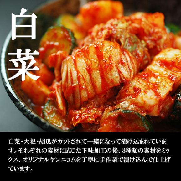 白菜・大根・胡瓜を一緒に楽しむ本格手作りミックスキムチ500g(袋入)【冷蔵限定】#802