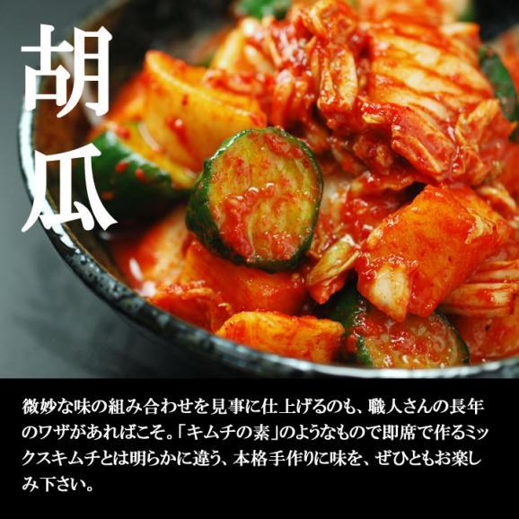 白菜・大根・胡瓜を一緒に楽しむ本格手作りミックスキムチ500g(袋入)【冷蔵限定】#804