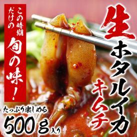 獲れたて新鮮 生ほたるいかキムチ500g (ホタルイカ キムチ)3〜5月にしか水揚げされない逸品!【冷凍・冷蔵可】