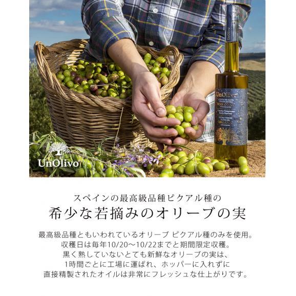 【魅惑のオリーブオイル】キャビア オリーブオイル UnOlivo アンオリーヴォ Caviar Olive Oil エクストラバージンオイル06