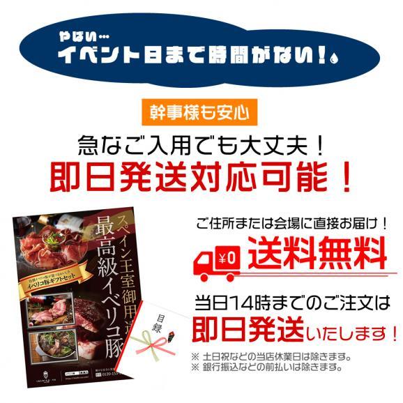 【パーティ 2次会 景品】目録 A3 パネル付き 豪華 イベリコ豚 5000円分 選べるギフト 06