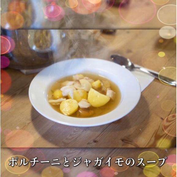 乾燥ポルチーニ茸 スライス250g02