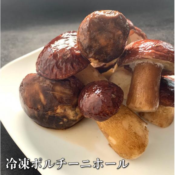 冷凍ポルチーニ茸 ホール500g01