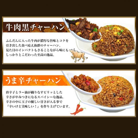 4種チャーハン&ワンタンスープセット(計5商品/合計25個)【全国送料無料】05