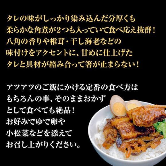 【台湾屋台 魯肉飯(ルーローファン)5食入】ルーロー飯 ルーローハン【送料込】03