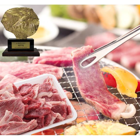 A5等級 神戸牛 BBQ・焼肉 セット (赤身・ ロース・カルビ) 500g01