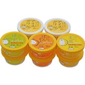 【本州・四国・九州 送料無料】アイスクリンと柑橘シャーベットセット 【10個入り】