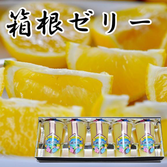スイーツ 湘南ゴールドゼリー 5本ギフトセット04