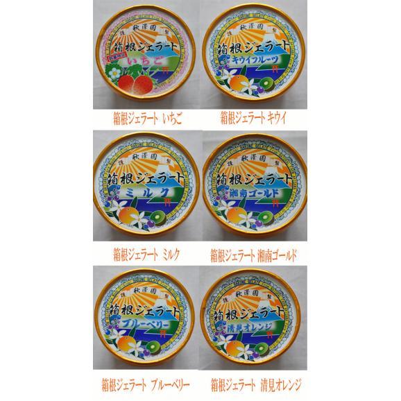 箱根ジェラート お試し6個セット お中元02
