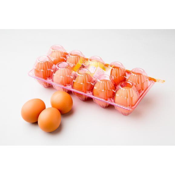 日本一こだわり卵(200個入り)01
