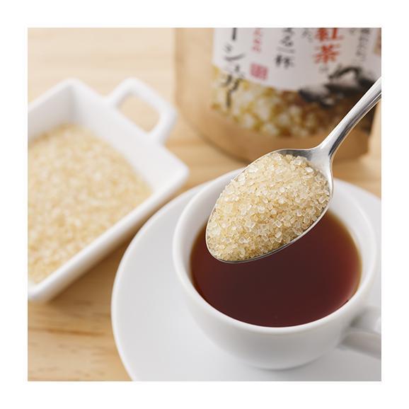 [The Luxury Sugar] ジンジャーシュガー 60g02