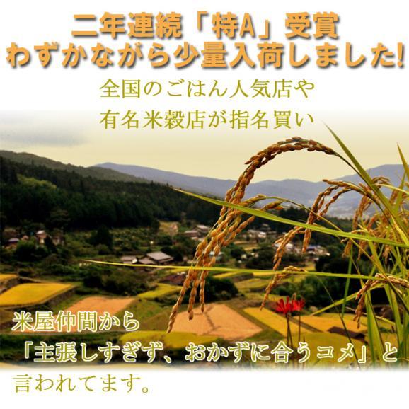 森のくまさん 熊本県産 1,050g (7合)  送料無料 メール便 (代引き・日時指定不可)03