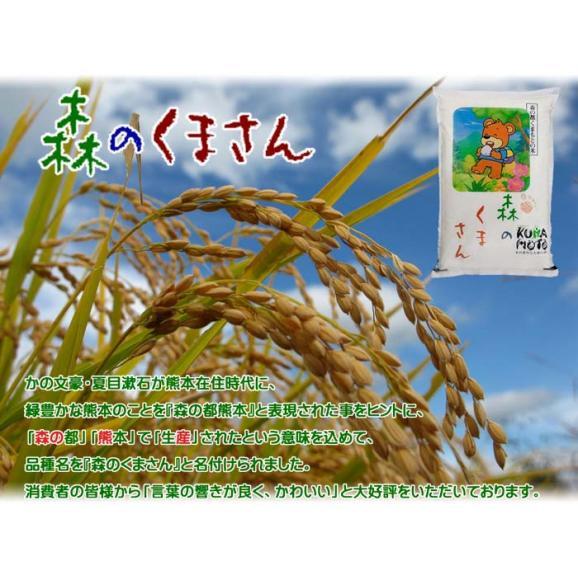 森のくまさん 熊本県産 1,050g (7合)  送料無料 メール便 (代引き・日時指定不可)04