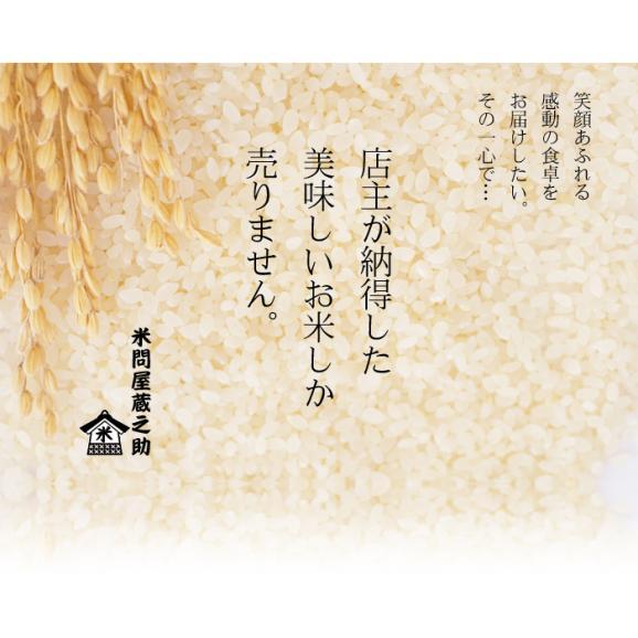 森のくまさん 熊本県産 1,050g (7合)  送料無料 メール便 (代引き・日時指定不可)05