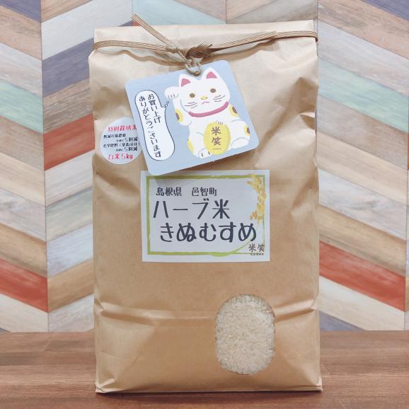 特別栽培米石原高原ハーブ米 島根県産 きぬむすめ 白米5kg01