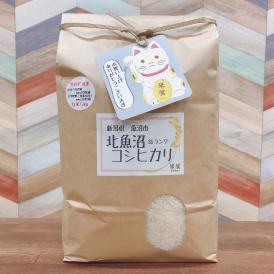 特別栽培米 雪室貯蔵米  新潟県北魚沼産 コシヒカリ    最高レベルSS 白米5kg