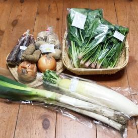 自然のチカラ・野菜セット 約5日分(8~10品目)