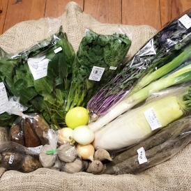 自然のチカラ・野菜セット 約6日分(10~12品目)