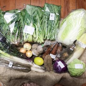 自然のチカラ・野菜セット 約7日分(12~15品目)