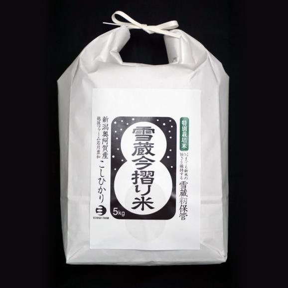 【新米】特別栽培米 雪蔵今摺りこしひかり 5kg01