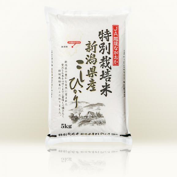 【新米】越後ながおか 特別栽培米 新潟県産コシヒカリ 5kg01