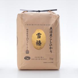 【新米】特別栽培米 魚沼産こしひかり 雪椿 5kg