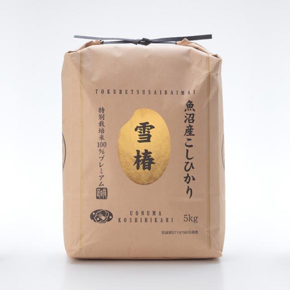 特別栽培米 魚沼産こしひかり 雪椿 5kg01