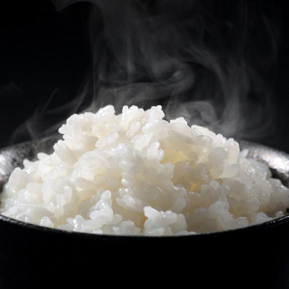 特別栽培米 魚沼産こしひかり 雪椿 5kg03