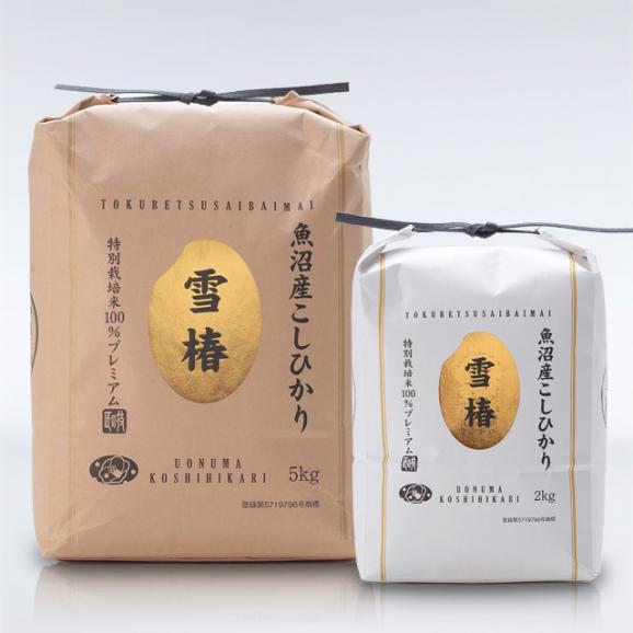 特別栽培米 魚沼産こしひかり 雪椿 5kg06