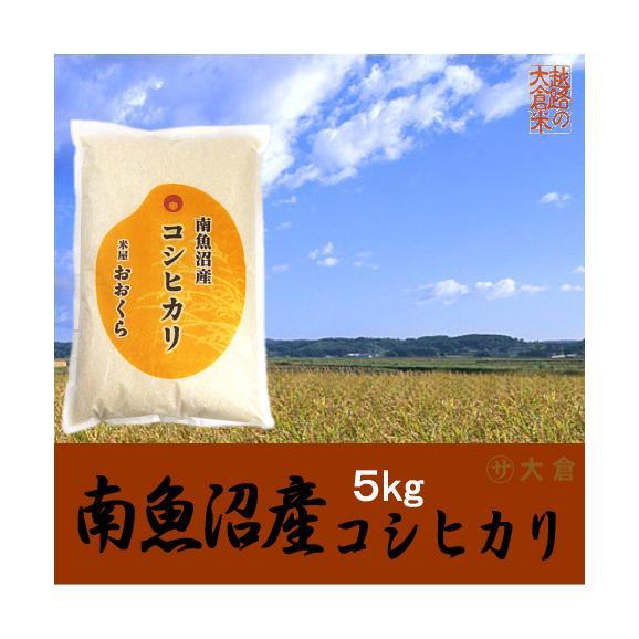 南魚沼産コシヒカリ(令和元年産) 5kg【送料無料(本州のみ)】01