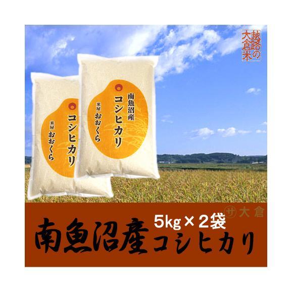 南魚沼産コシヒカリ 10kg(5kg×2袋)(令和2年産)【送料無料(本州のみ)】01