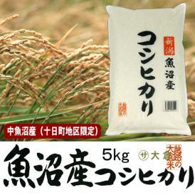 中魚沼産コシヒカリ(平成30年産)5kg(十日町地区限定米)【送料無料(本州のみ)】